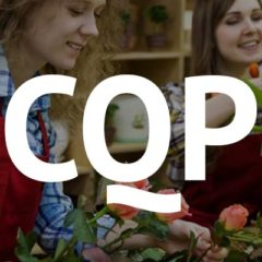 Contrat de professionnalisation CQP à Aix en provence et Gap